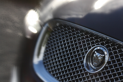 Jag grille